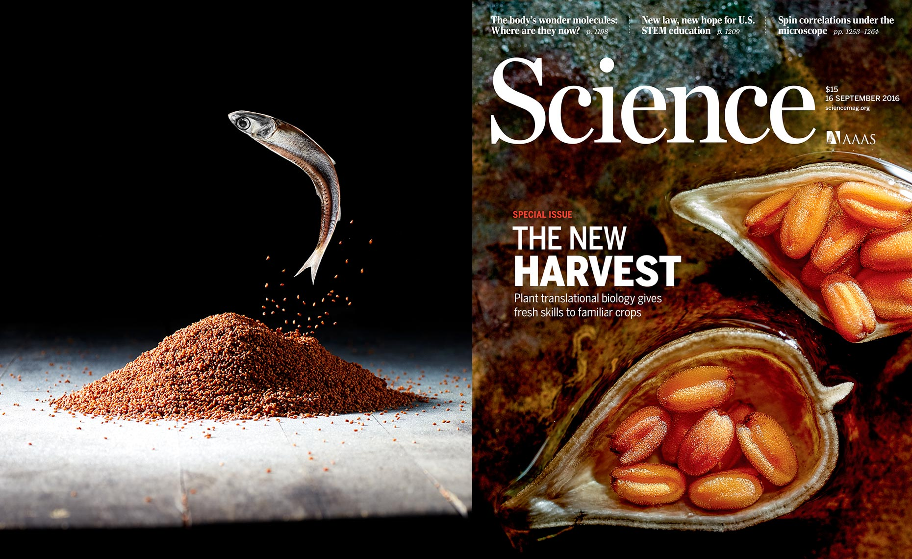 Science magazine editorial
