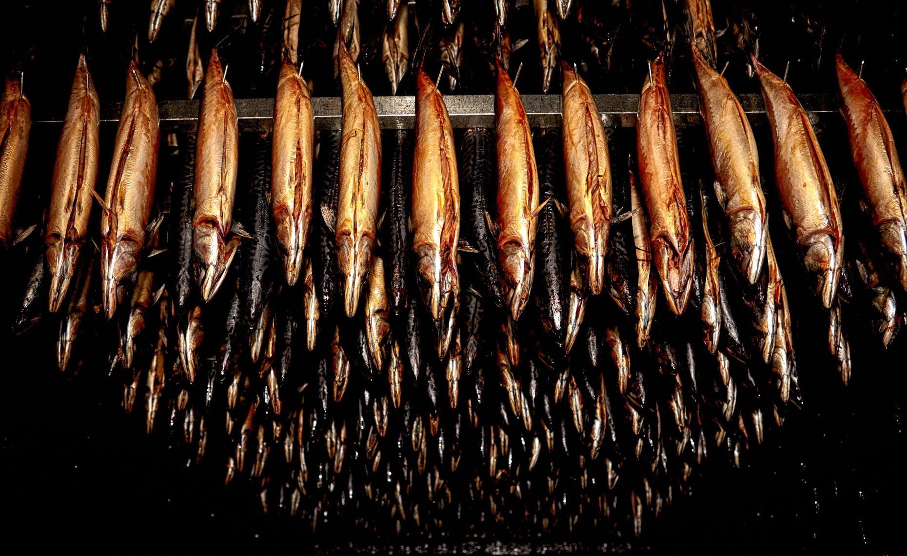 Smoked Fish Photography